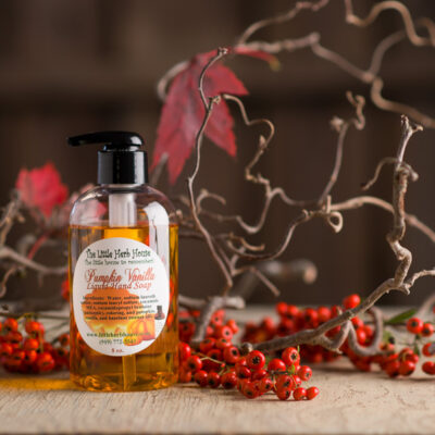 Barn & Gardens of The Little Herb House - Pumpkin Vanilla Hand Soap