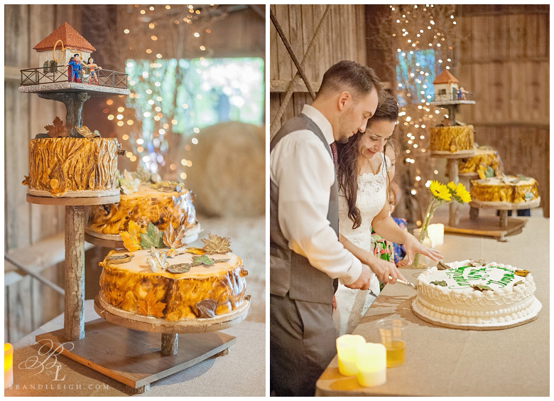 Little Herb house- Brandi Leigh Photography- Destination Wedding Photographer-Cake cutting