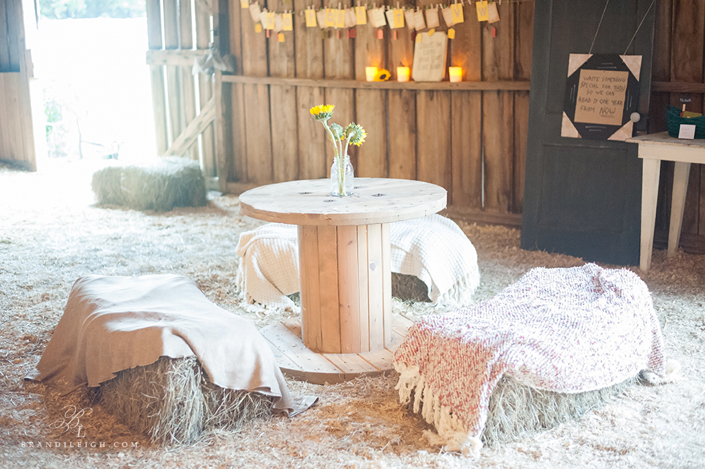 Little Herb house- Brandi Leigh Photography- Destination Wedding Photographer-details1