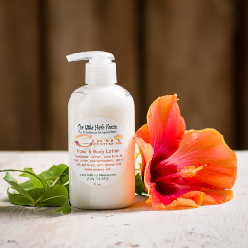 Coco Cabana Hand & Body Lotion | The Little Herb House