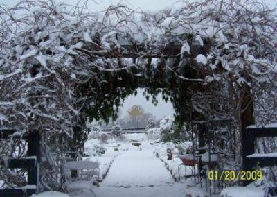 snowy herb garden | winter wedding